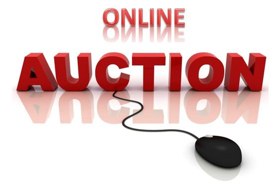 Online Bargain Hunting at Vehicles Auction